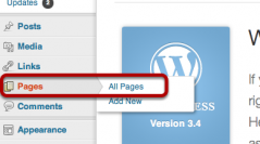 Editing Pages in WordPress